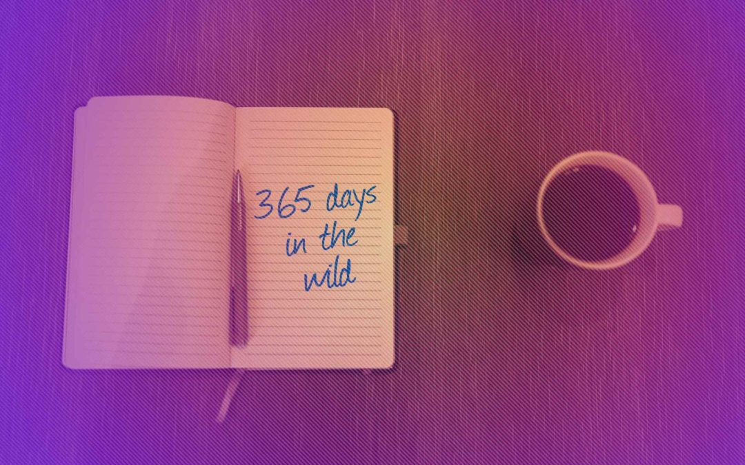 365 Days in the Wild